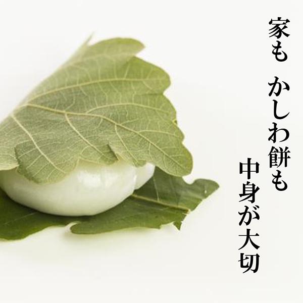 中身が大切!川口市構造見学会【新築】4/18(土)
