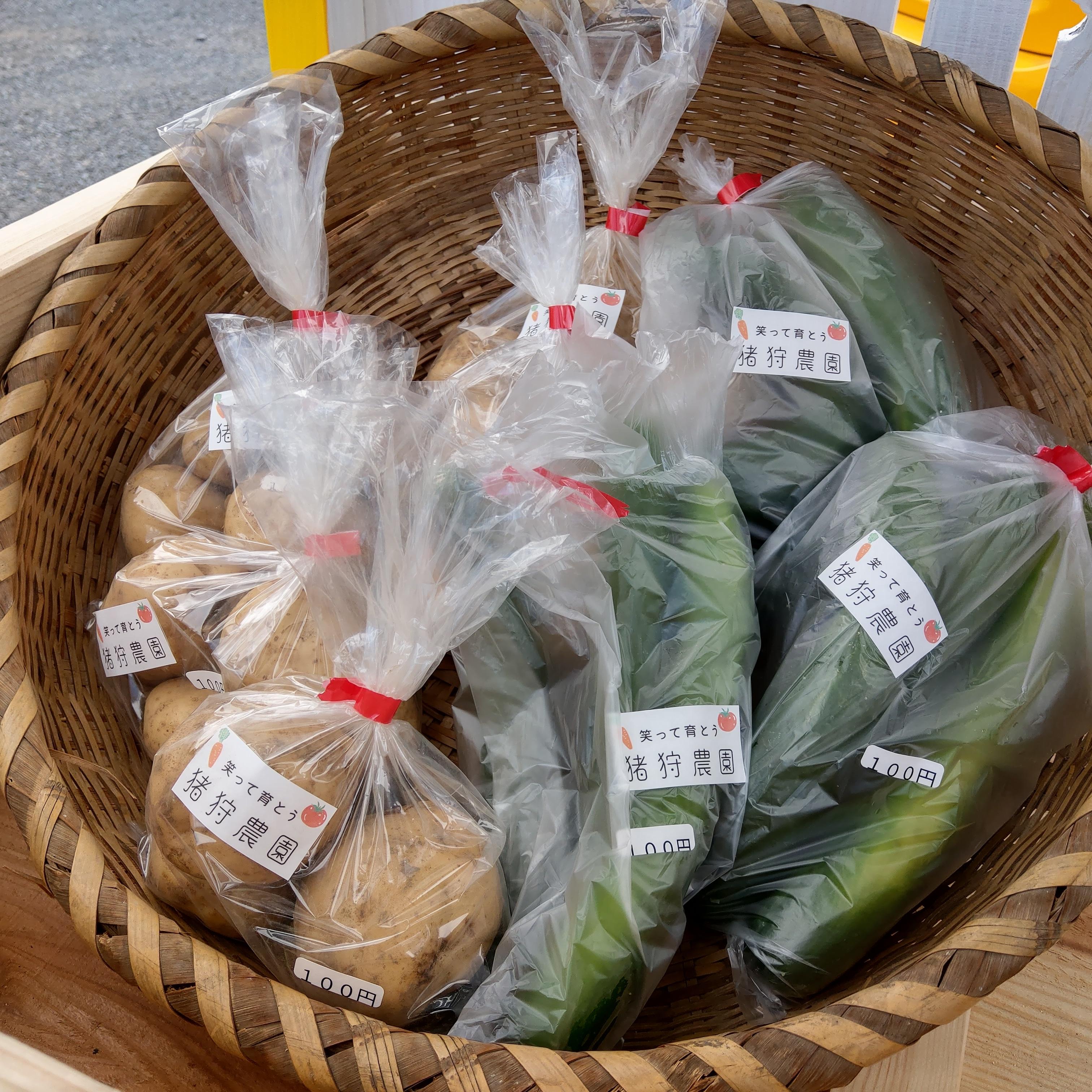 野菜の無人販売スタート。