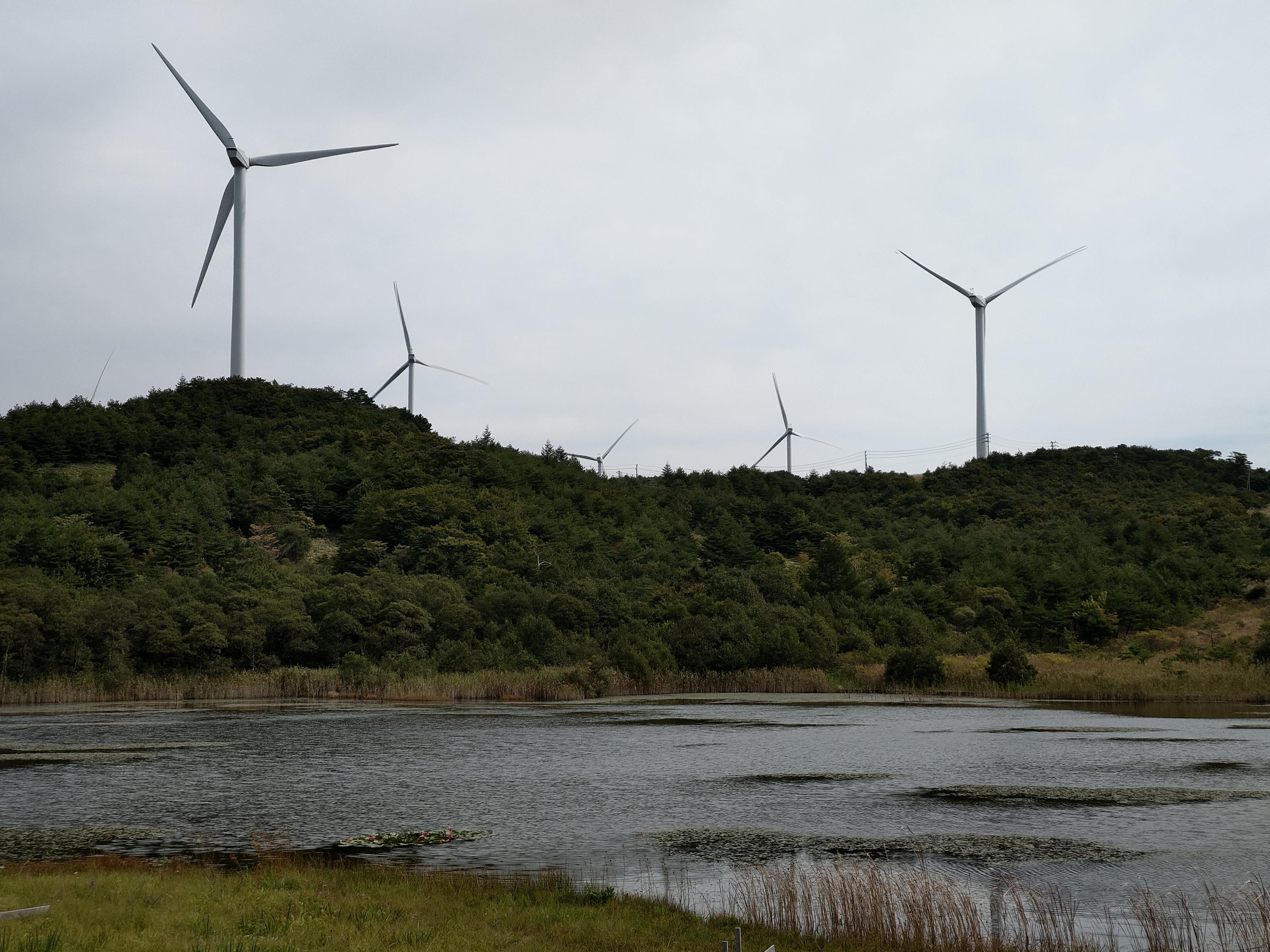 風力発電。