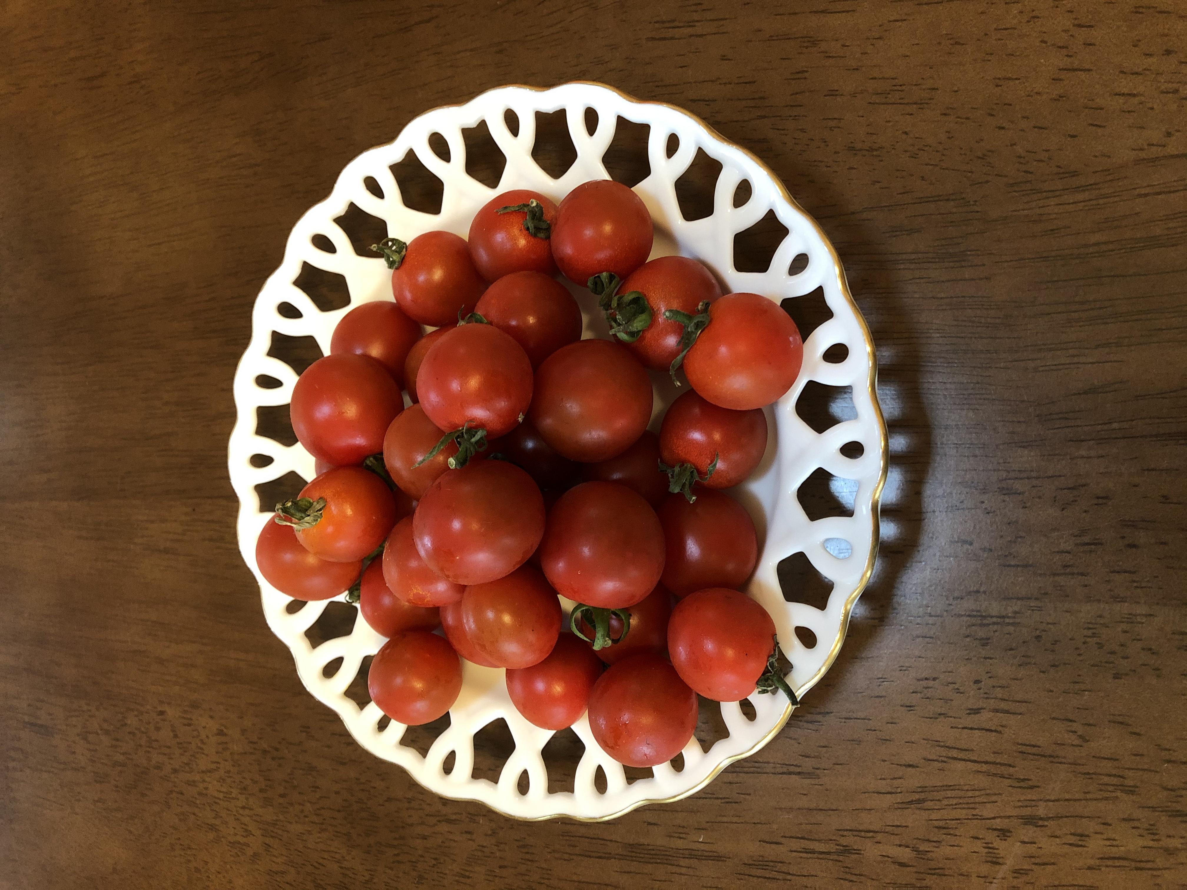 美味しいミニトマト
